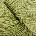Dream in Color Butterfly BFL - Shiny Moss (009)