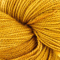 Dream in Color Butterfly BFL - Gold Experience (010)