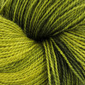 Dream in Color Butterfly BFL - Scorched Lime (028)