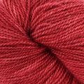 Dream in Color Butterfly BFL - Miami Red (034)