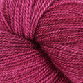 Dream in Color Butterfly BFL - Fancy (070)