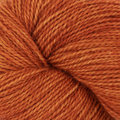 Dream in Color Butterfly BFL - Tex Mex (808)