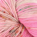 Dream in Color Smooshy with Cashmere - Relish The Vote! (544)