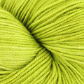 Dream in Color Smooshy with Cashmere - Prickly Pear (806)