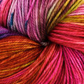 Dream in Color Smooshy - Her Charisma (567)