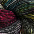 Dream in Color Smooshy - Charcoal Prismatic (574)