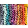 Koigu KPPPM Pencil Box Set - Dragonfly (DRAGON)