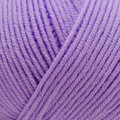 Sesia Nordica - Purple (6532)